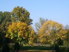 Herbstimpressionen4