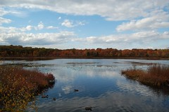 Hammond Pond