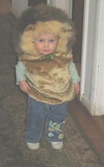 lionfront2
