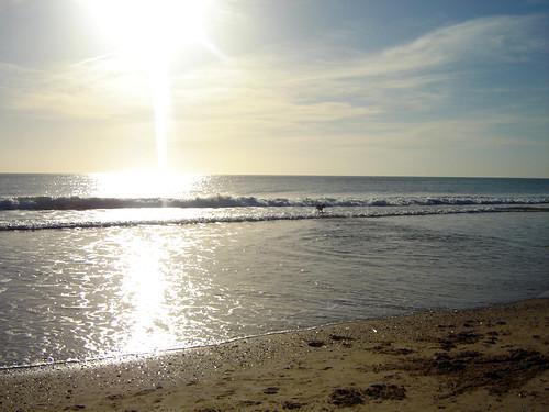 O Tobias e a praia