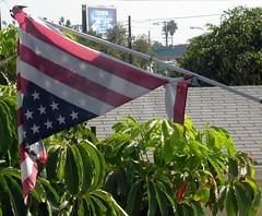 Battered Flag