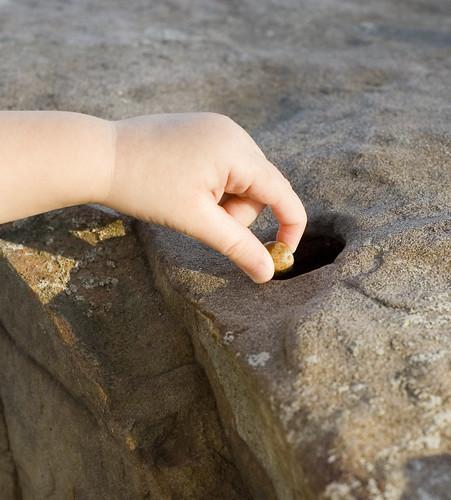 Putting Acorns in a Hole in a Rock