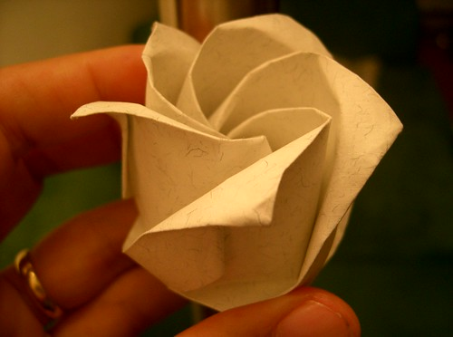 O³ Rose 0.8, Side