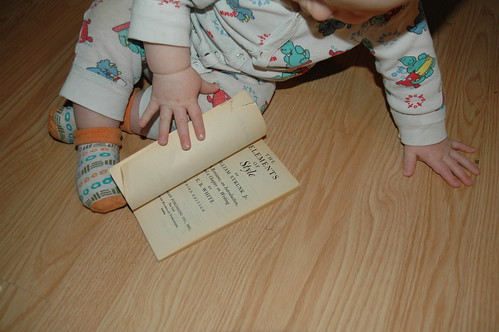 Baby Bibliophile - Elements of Style Edition III