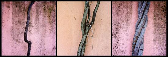 Twigs 1-2-3