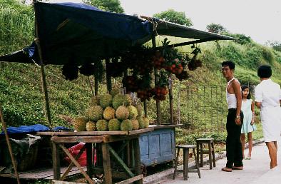 durian_stall_farrer_rd