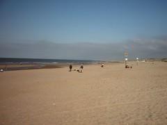 Beach in Scheveningen