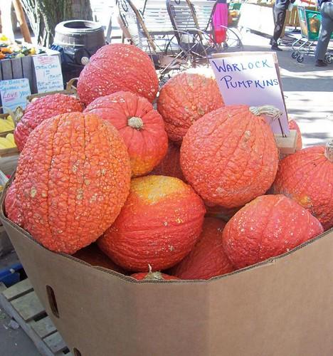 Warlock Pumpkins