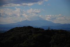 天園から見た富士山