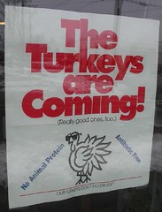 Thanksgiving advertisement