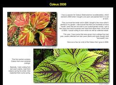 Coleus 2006 Tabblo