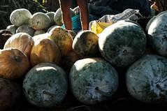 21 Pumpkin seller