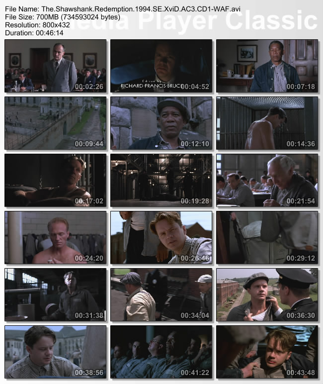 The.Shawshank.Redemption.1994.SE.XviD.AC3.CD1-WAF