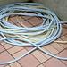 25tangled