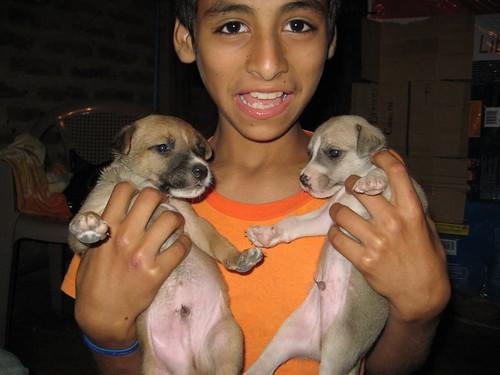 Edgar med Daddy Yankee och Don Omar
