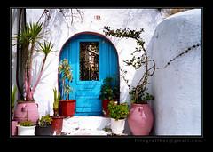 Door In Color