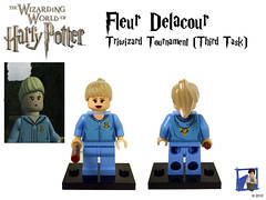 Fleur Delacour - Triwizard Tournament (Third Task) photo by tin7_creations