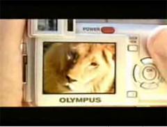 camera, digital camera, cameras, digital cameras, optical zoom camera, optical zoom digital camera, olympus camera