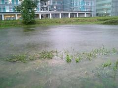 http://www.flickr.com/photos/laclef_yoshiyasu/262233678/
