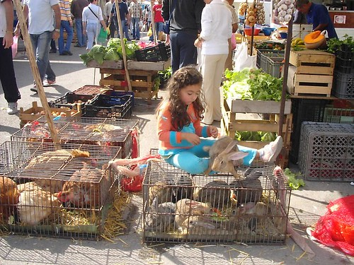 Setubal - Mercado da Xepa
