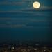 宵闇の秋月