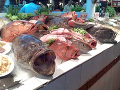 Fresh Fish for Sale - at some random tourist trap off Thaweewong Road