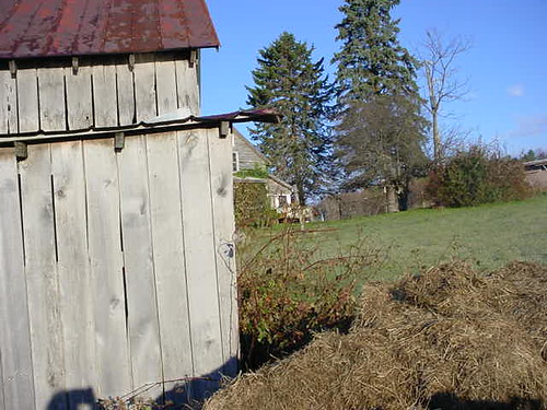 Strange view of the house and barn