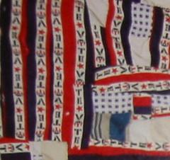 insert from Irene Williams' Vote quilt