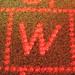 laserW