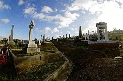 Foto: Graveyard in Sydney