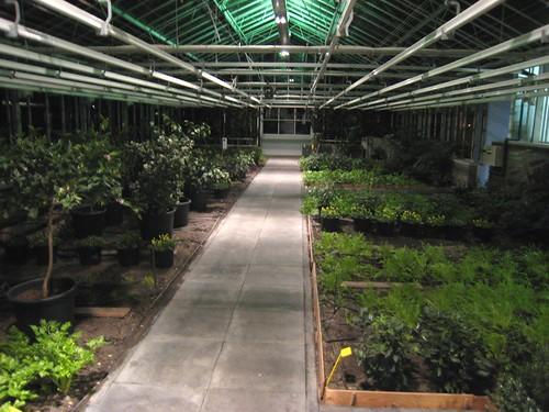 De Kas Garden