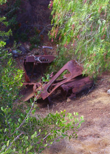 rusty_relic_catalina