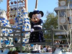 Disneyland in December (22)