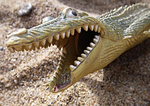 Sand Croc Rising