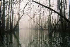 LakeCanal1