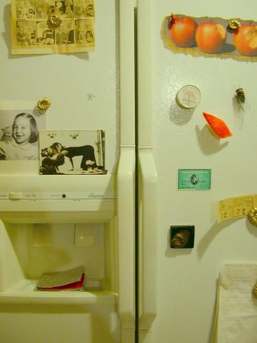 my refrigerator doors