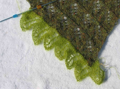 Fern Leaf edging on faux Birch shawl
