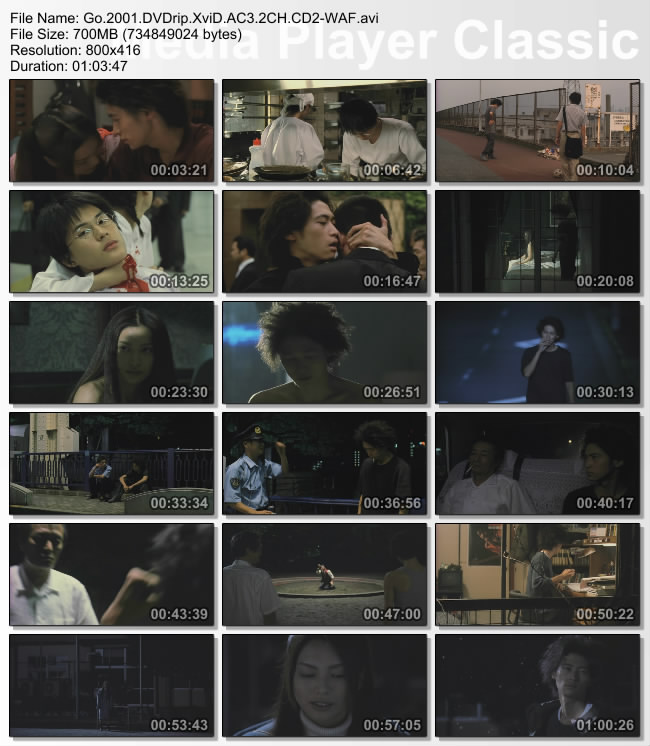 Go.2001.DVDrip.XviD.AC3.2CH.CD2-WAF