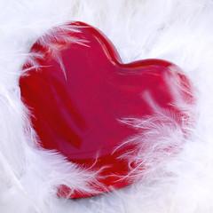Love me tender....