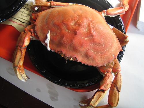 Redondo Beach: Northern Crab