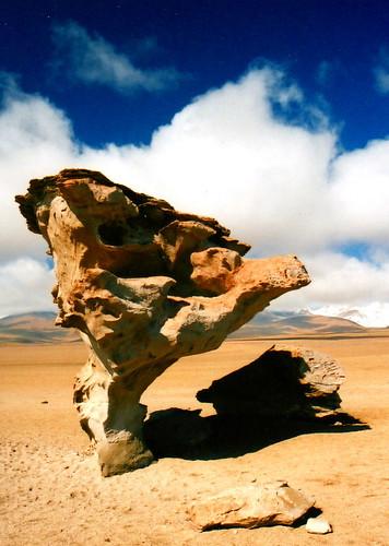 مناظر خلابة لبحيرة الملح ببوليفيا 304078264_c318f5e907