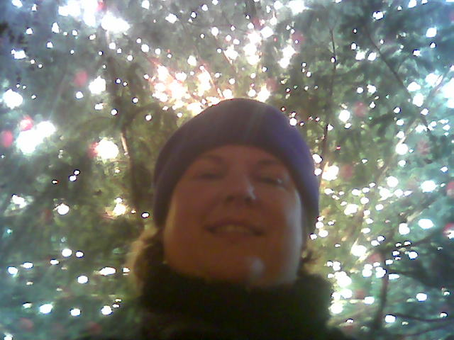 Greetings from under the tree.  :)