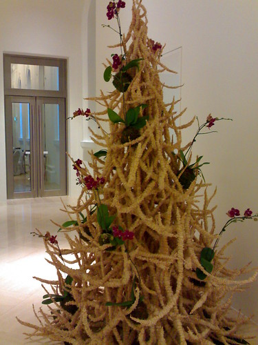 A different kind of Xmas tree