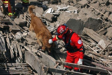 Peru terremoto