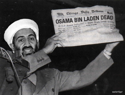 harry bin laden