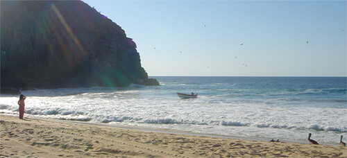 landing right on the beach