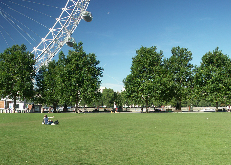 Jubilee Gardens next to London Eye