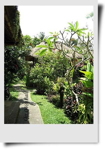 Bali-044