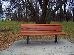 Benches in Toledo's Foxglove Meadow park