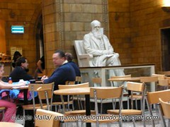 Charles Darwin no café do museu
